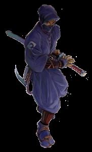 ninja splat pic